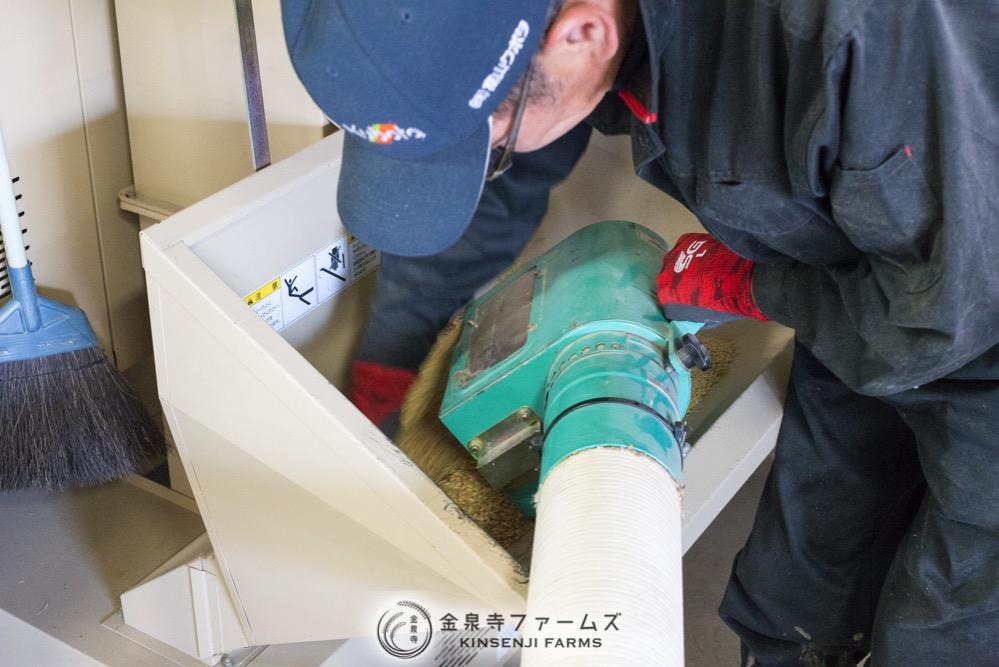 2017年 稲刈り 初日 コシヒカリ 富山米 金泉寺ファームズ 通販 玄米 精米 お米 米 コメ 7