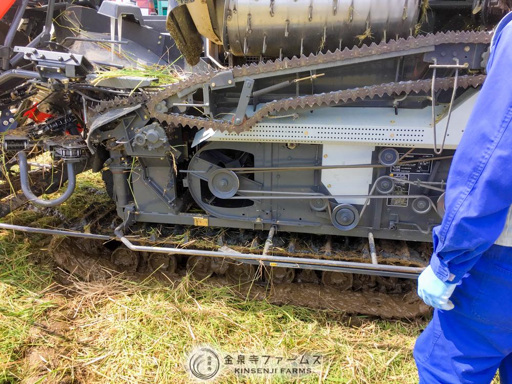 富山米 コシヒカリ 稲刈り 2日目 10