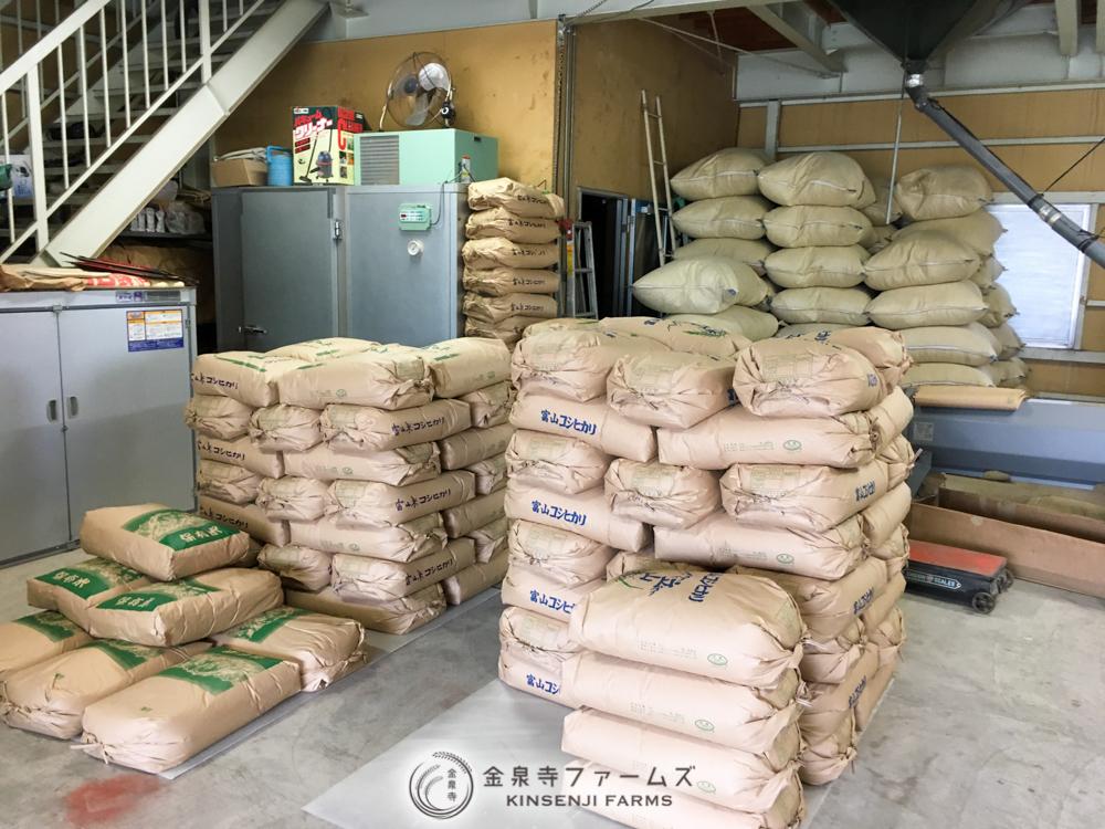金泉寺ファームズ 袋詰 収穫 2