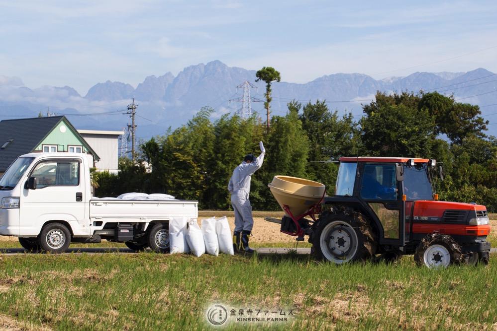 秋の肥料散布2