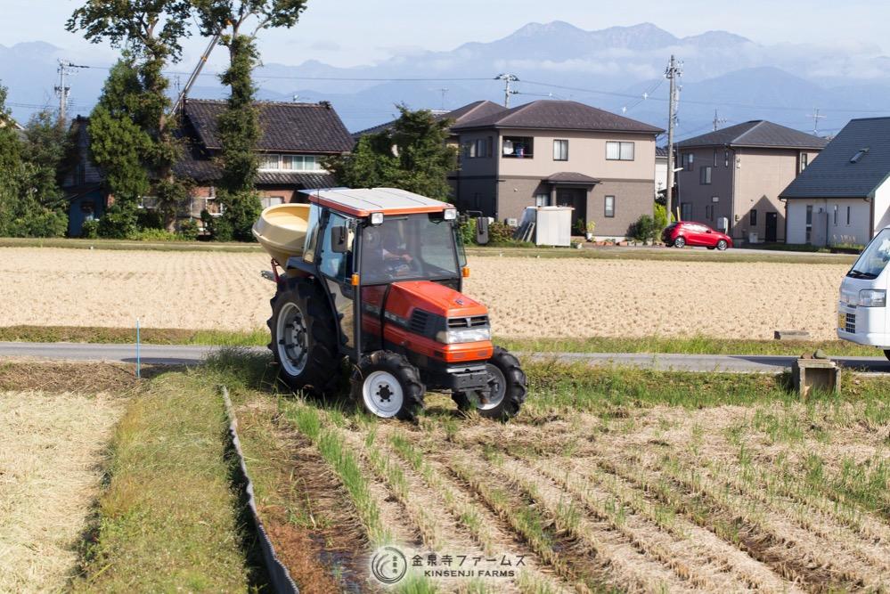 秋の肥料散布1